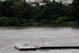 Worse than 1974 ... A pontoon floats down the Brisbane River.