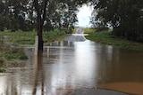 A swollen Belubula River after heavy rain.