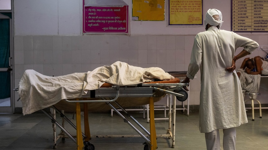 India reports record deaths