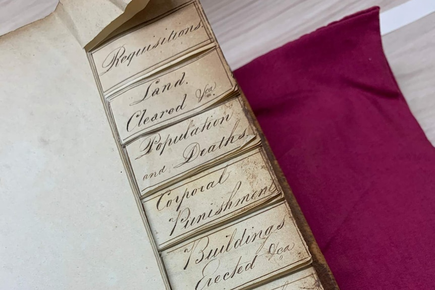 An old ledger with cursive writing with a violet background