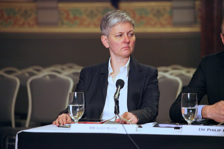 RBA assistant governor Luci Ellis at a House of  Representatives economic committee hearing in Melbourne