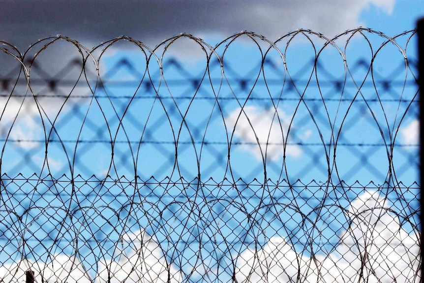 Pictures of barbed wire fencing against a blue sky.