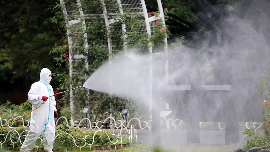Worker sprays insecticide at Tokyo's Yoyogi Park