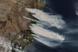 satellite image of large plumes of smoke blowing over the NSW coast