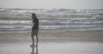 Foraging on a beach