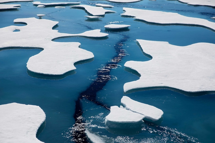 A large crack in sea ice can be seen beneath the surface of the water in between apparently melting ice flows.