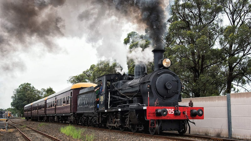 Steam trains will run alongside cyclists and walkers between Picton and Mittagong.