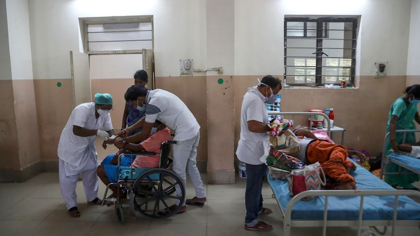 Indian health workers attend to patients infected with black fungus.
