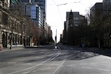 An empty city street with a tram line