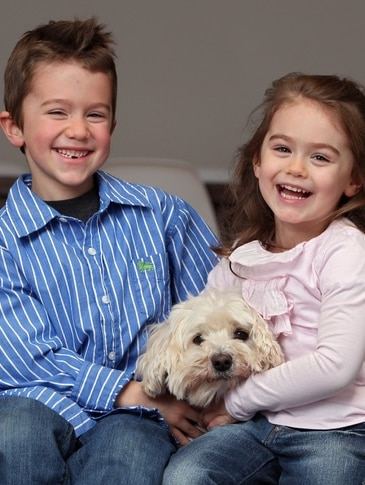 Max the dog with brother and sister Hudson and Avalon for a story about what to do when the family pet dies.