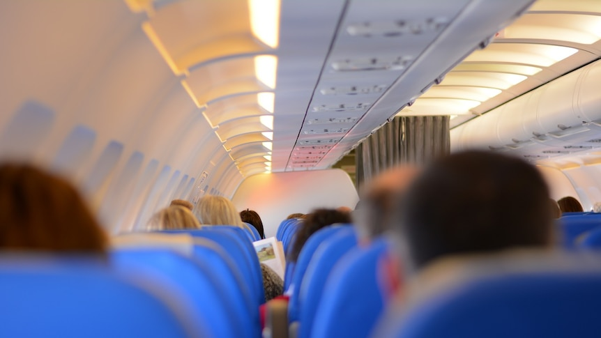 People sitting on a plane.