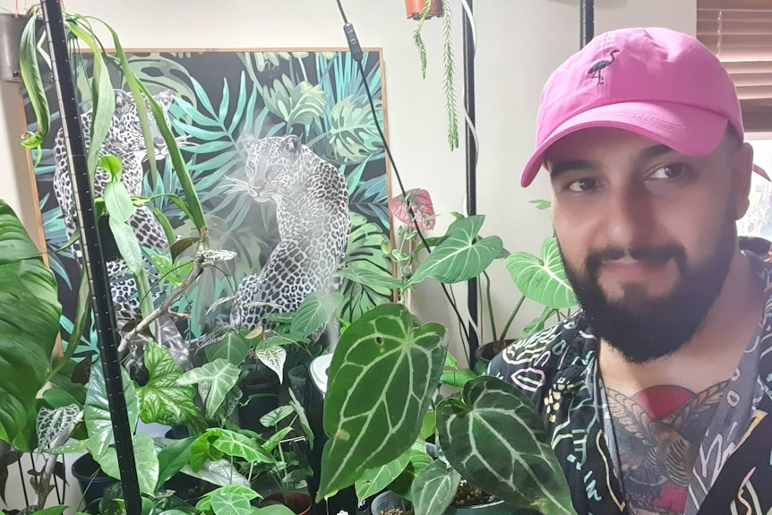 Sev Ipradjian holds an Anthurium hybrid plant, and propagates rare indoor varieties to sell.