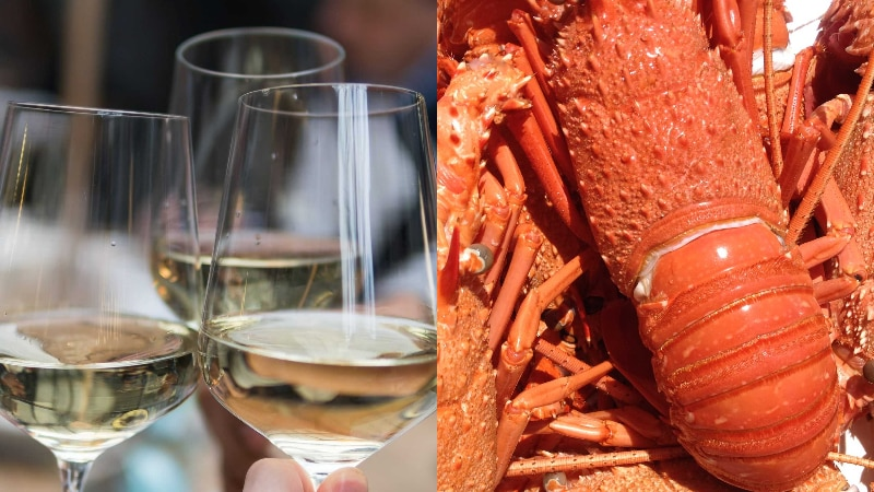 A split image showing glasses of white wine being clinked and a lobster.