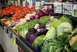Vegetables on display at supermarket.