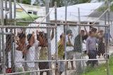 Asylum-seekers on Manus Island