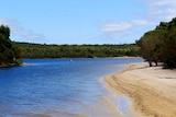 Wide view of a blue lake, sandy shore, surrounded by trees and greenery.