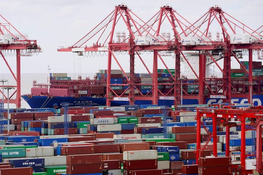 Several red cranes sit among dozens of shipping containers at a port in China