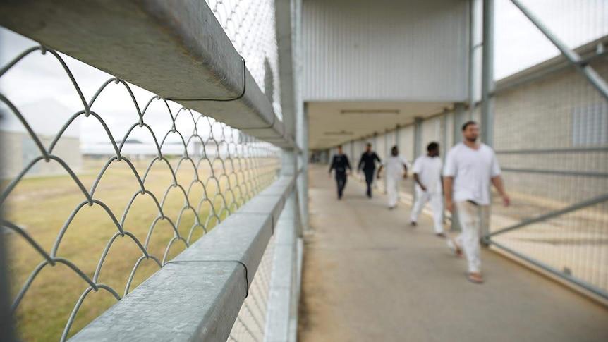 Staff escort prisoners through Lotus Glen Correctional Centre in far north Queensland.