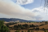 Smoke column from a fire in a rural area.