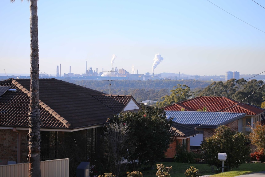 Figtree where the pollution spill occurred is just upstream from the Port Kembla steelworks.