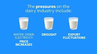 Dairy pressures