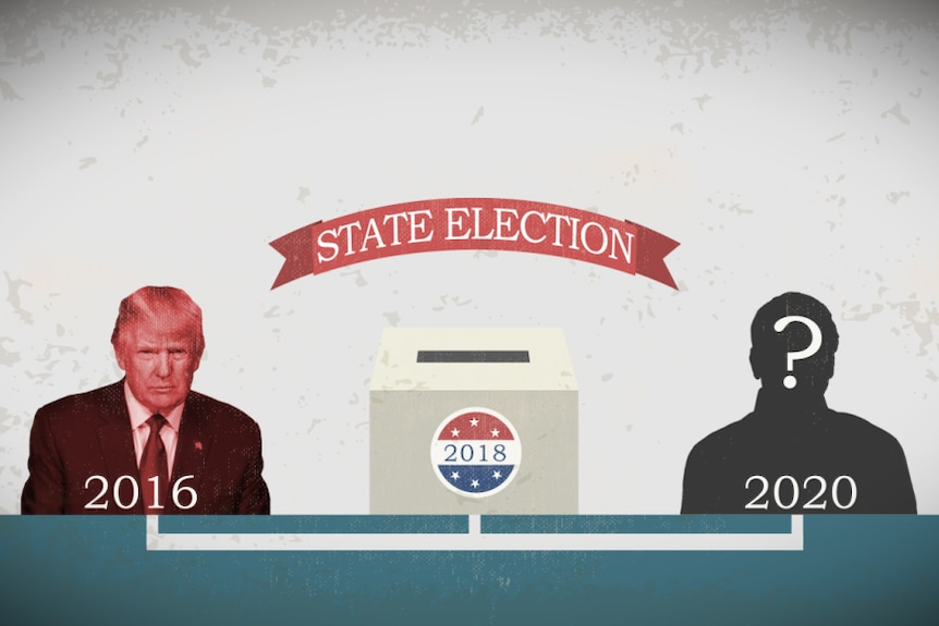 What are the midterms graphic