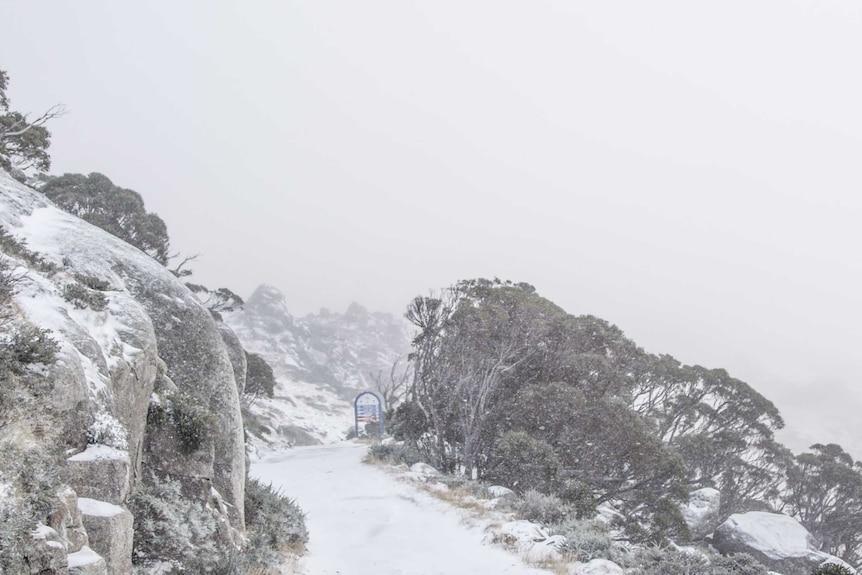Snow at Thredbo