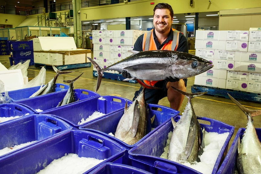 Man in fluoro vest holding a tuna over cases of fish at a markets