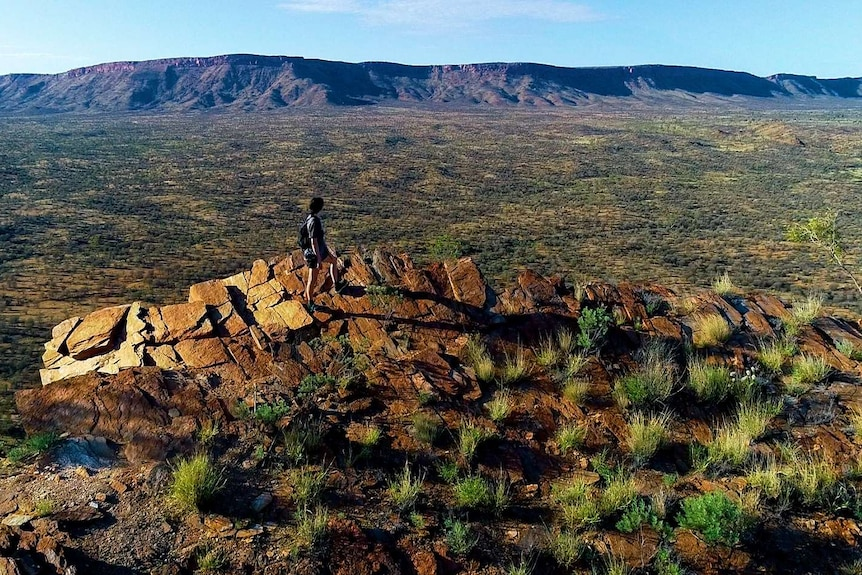 A woman scans the MacDonnell Ranges while walking the Larapinta Trail.