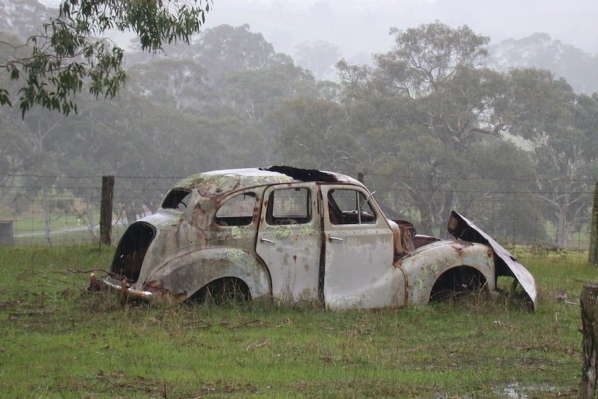 A rusting old car on grass with trees behind it in the mist.
