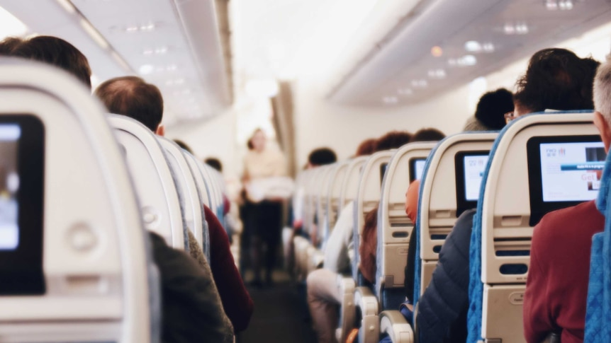 The backs of passengers' heads and their in-seat screens can be seen from an aisle seat on a plane