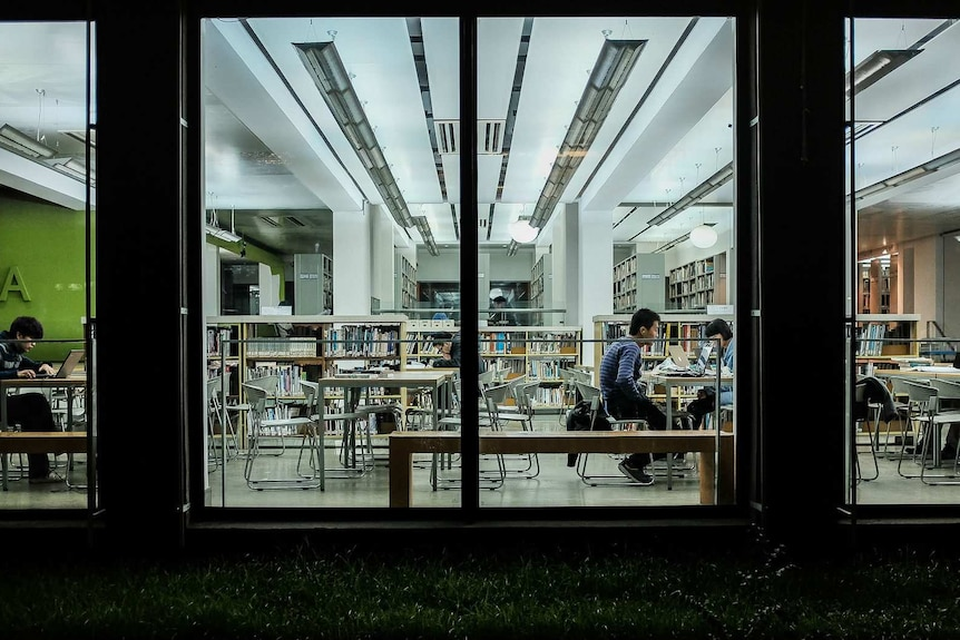 Students study in a library at China's Tongji University.