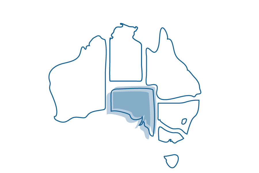 An illustration of a map of Australia that shows South Australia highlighted.