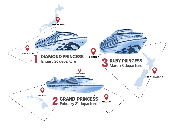 Infographic showing different cruise ships.