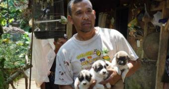 A man holds three puppies.