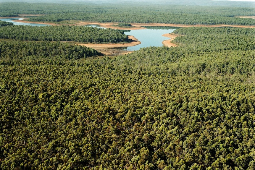 An aerial shot of an old mining site filled with jarrah trees