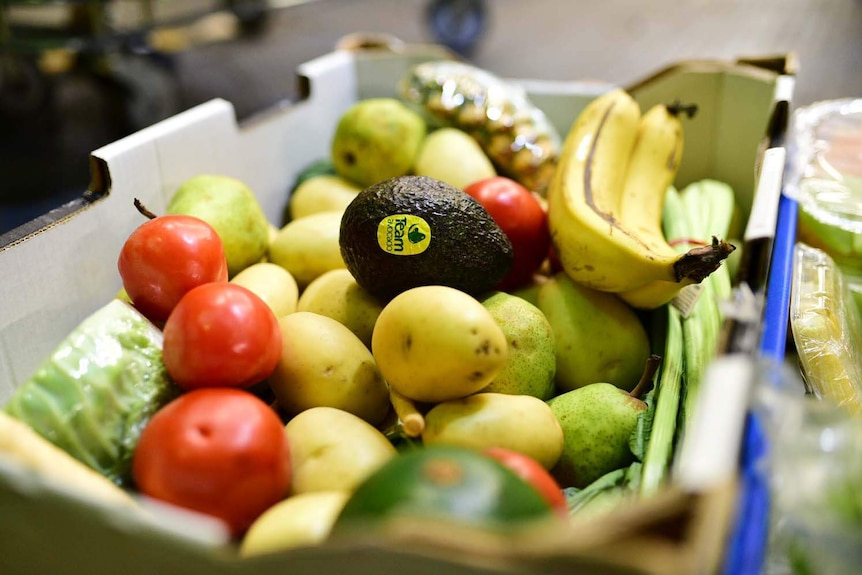 Ripe fruit and vegetables in a box at Oz Harvest in Brisbane.