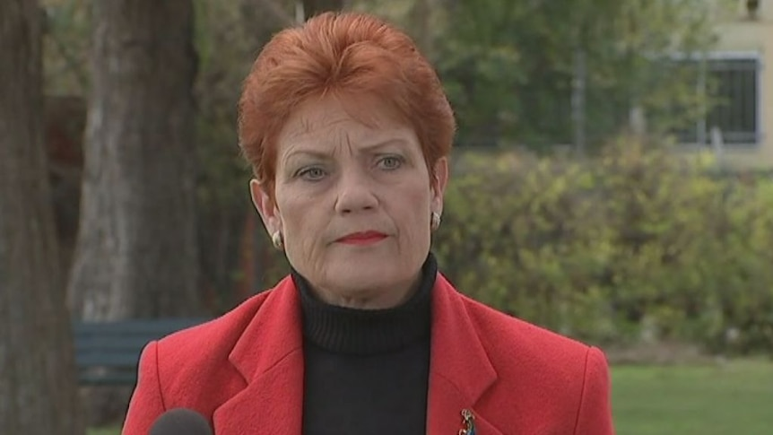 Pauline Hanson explains her calls for a royal commission into Islam
