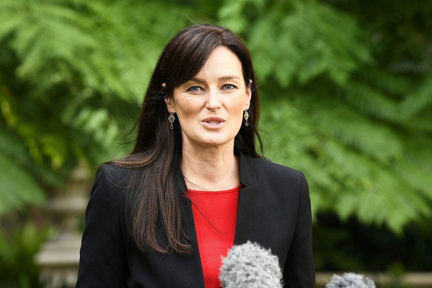 Leanne Linard speaks to media at Parliament House in Brisbane.