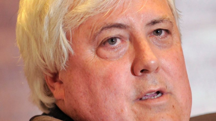 Clive Palmer's Queensland Nickel refinery was placed into voluntary administration this week.