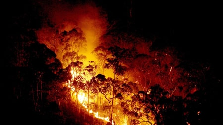 Homes have been lost in Toombullup as a bushfire rages through north-east Victoria. (File photo)