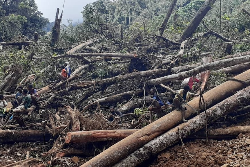People standing and sitting  between broken trees in Papua New Guinea after a landslide.