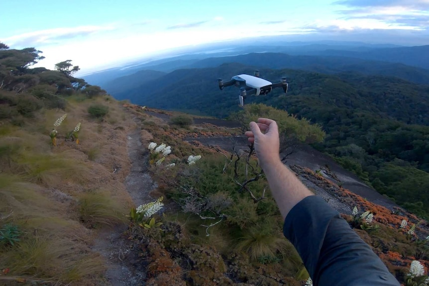 A drone floats over rugged bushland in far north Queensland