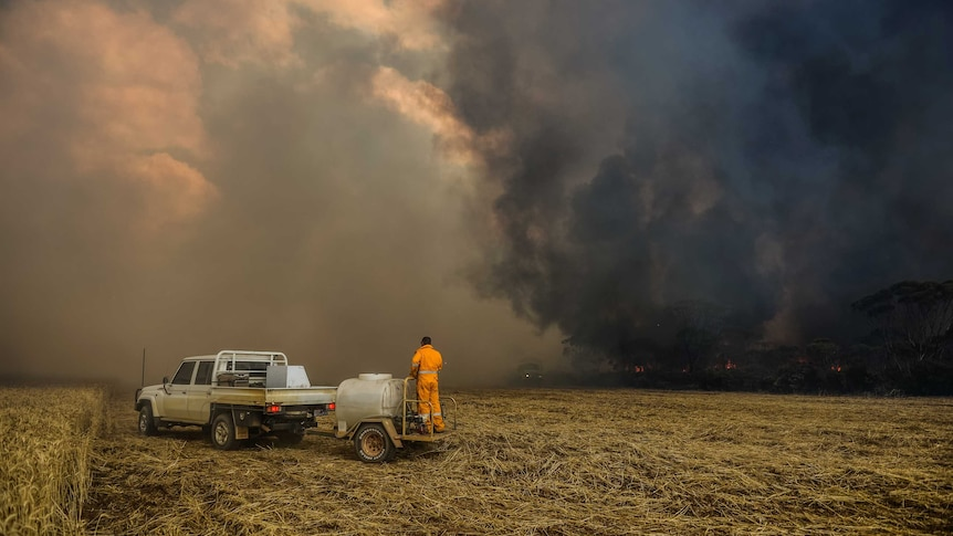 A firefighter stands on the back of a small trailer, surveying a bushfire at Grass Patch.