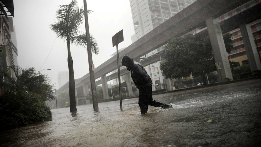 Hurricane Irma knocked out electricity to millions of Florida homes and businesses. (Image: Reuters)