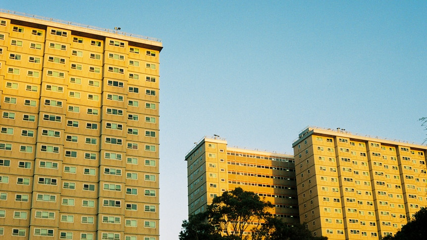 On a bright blue day at dusk, you view vast social housing towers bathed in golden light.