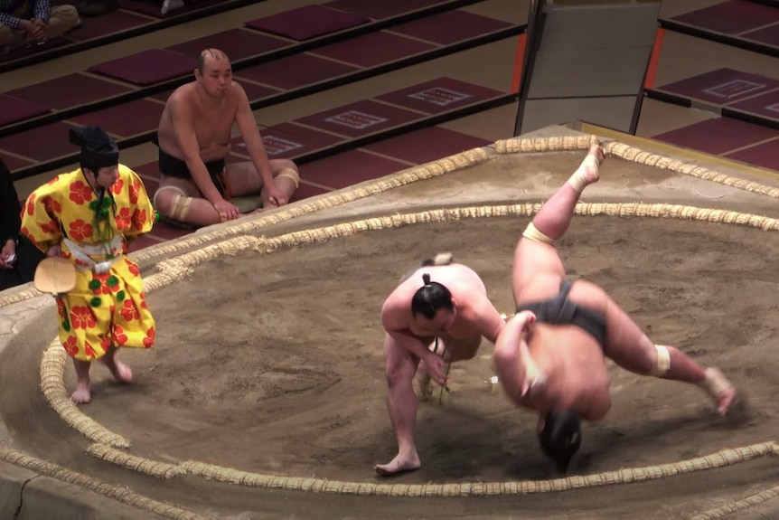 From a high angle, you're looking down at a sumo wresling ring, with one fighter suspended mid-air as it falls head-first.