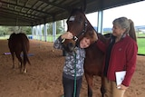 Liam Long hugs a horse used to treat his disability by psychiatrist Anja Kriegeskotten at Samford Riding for the Disabled