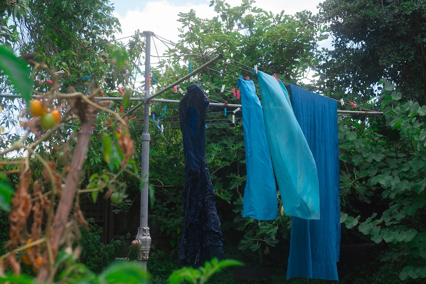 Four sheets of blue fabrics are seen hanging on a clothesline in a green, overgrown garden.