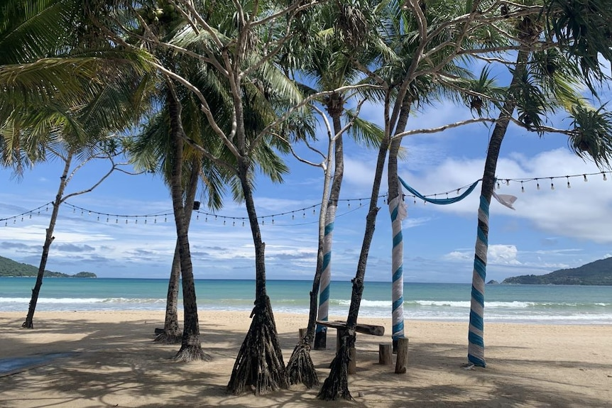 An empty beach shaded by palm trees